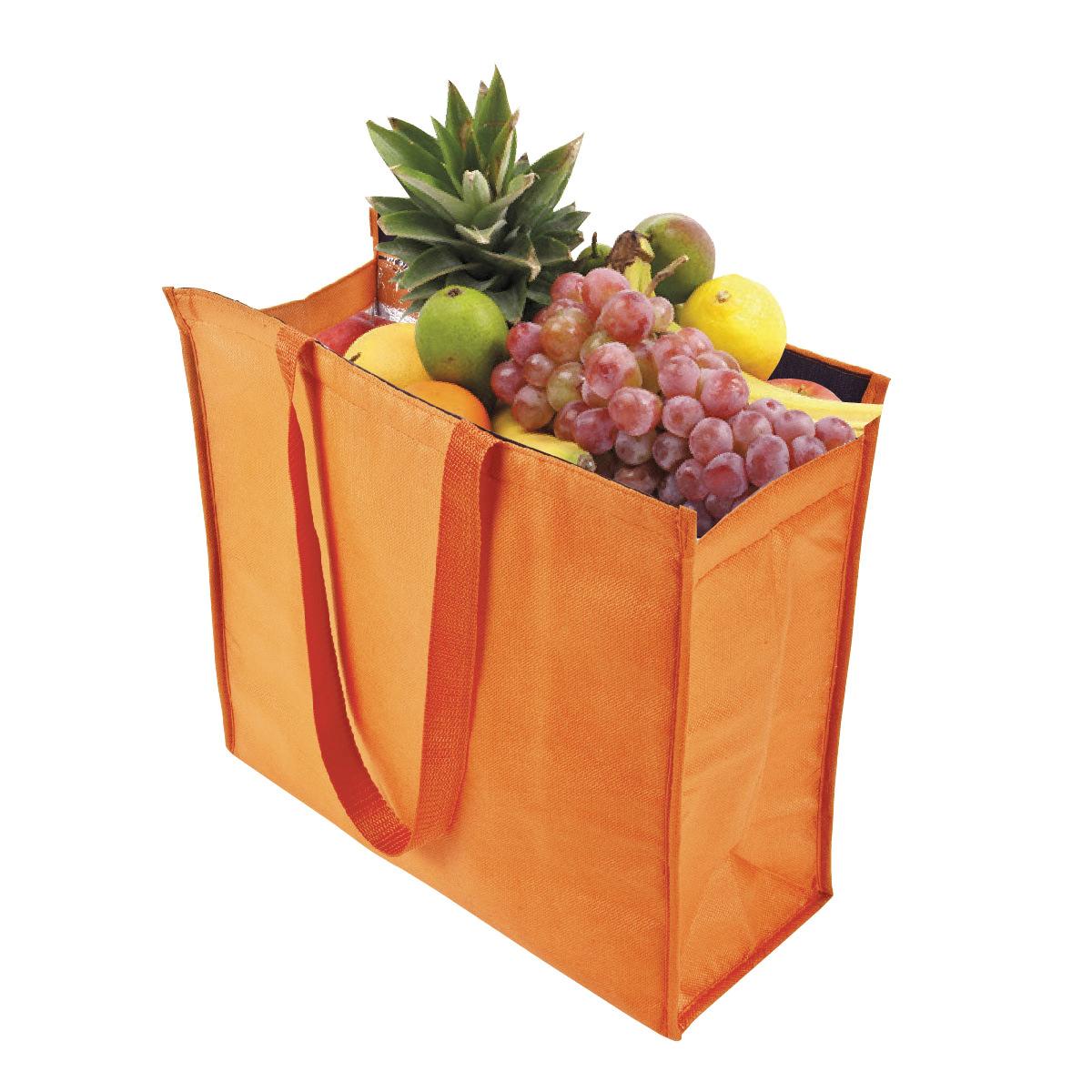 תיק קניות עם ציפוי אלומיניום לבידוד - סניק