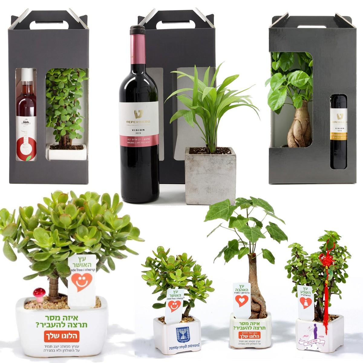 מארזי שי לחג: עציץ ממותג + בקבוק יין